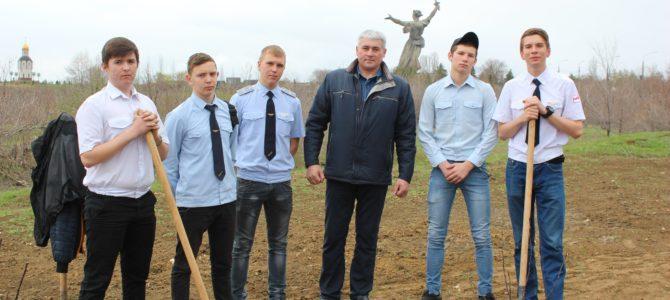 Студенты ГАПОУ «ВТЖТиК» совместно с теркомом РОСПРОФЖЕЛ высадили деревья на Мамаевом Кургане